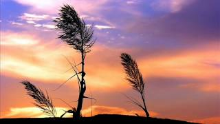 Download Example - Watch the sun come up (Fred Falke Remix) MP3 song and Music Video