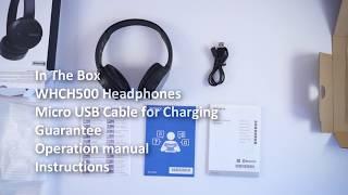 Sony WHCH500