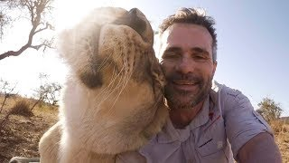 How To Talk To Lions #AskMeg | The Lion Whisperer