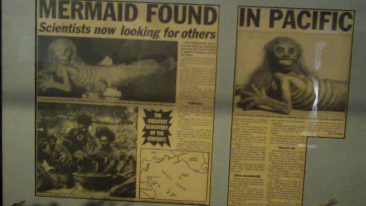 Fiji Mermaid W Kjr Feejee Youtube
