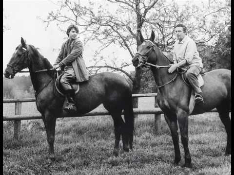 Obyčejná koňská historie