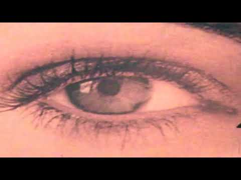 Tek Noir  655321 Music