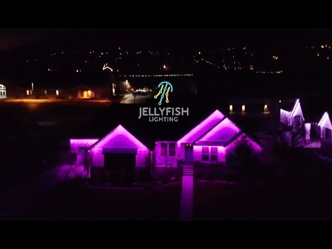 Residential Jellyfish Exterior Lighting