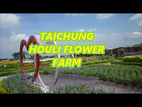 MAY 29 2016 | Vlogs | Houli Flowers Farm in Taichung Taiwan