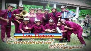 LOS TIPICOS CORRALEROS DE MAJAGUAL | EL TORO MIURA | CONTACTO 3175857231 COLOMBIA