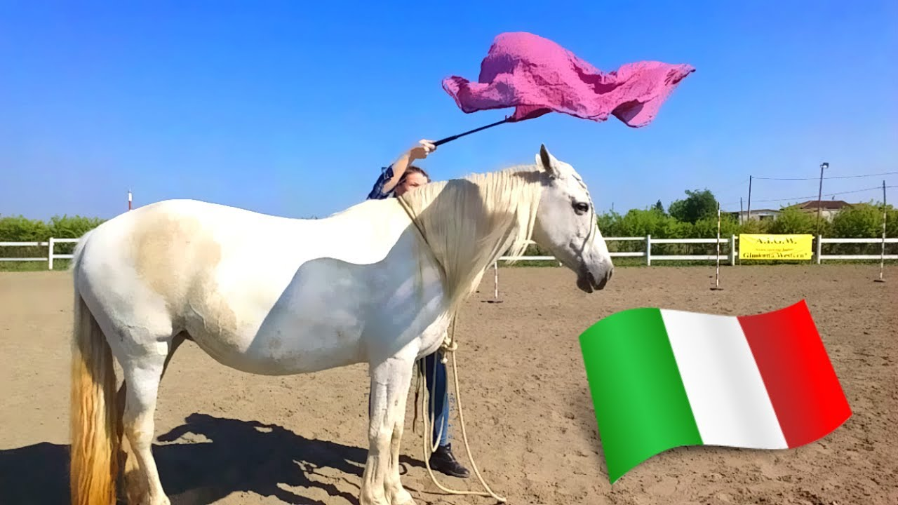 Dipingere un Cavallo – Parte Seconda – MondodiAristarco