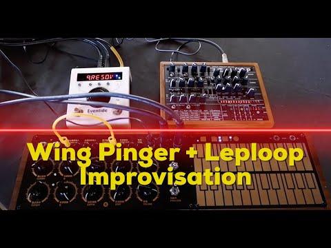 Wing Pinger Leploop Live Improvisation