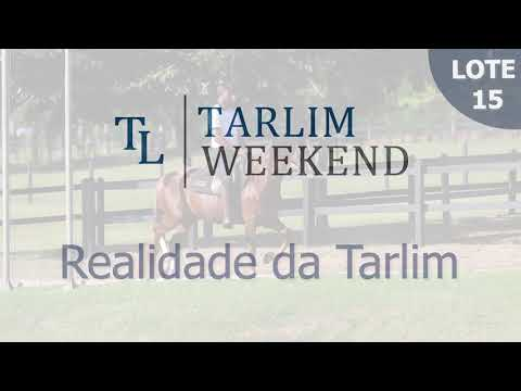 Lote 15 - Realidade da Tarlim (6º Leilão Tarlim)