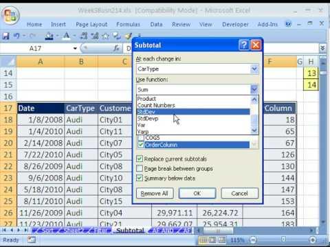 Highline Excel Class 18: Subtotals