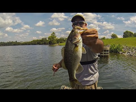 Summer Bass Fishing A New Lake!!! (Lake Frederick, VA)
