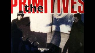 Never Tell - The Primitives