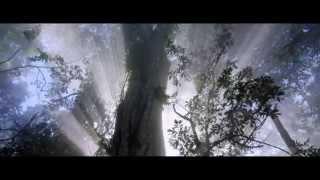 Trailer Once Upon a Forest / Il était une forêt (2013)