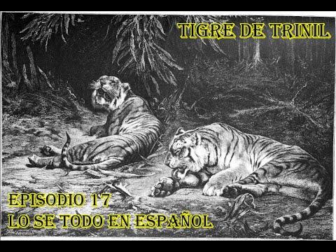Download Tigre de Trinil (Panthera Tigris Trinilensis) - Lo sé todo en Español