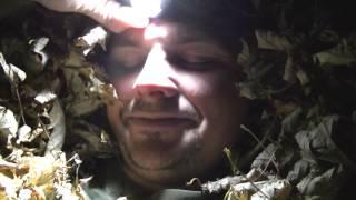 leaf shelter test