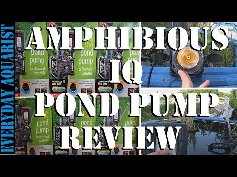 Best Energy Saving Pond Pump | Blagdon Amphibious IQ Review