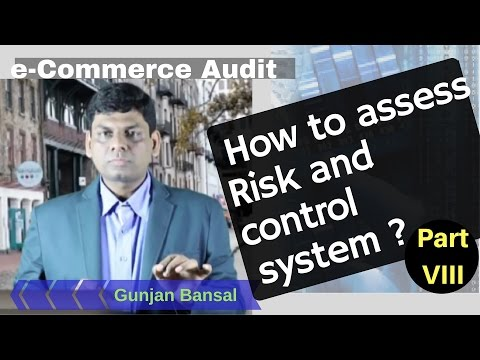 E-Commerce Audit - Risk and Control System