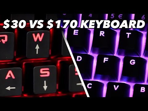 $30 Keyboard Vs. $170 Keyboard: We Try Cheap Vs. Expensive Keyboards In Fortnite