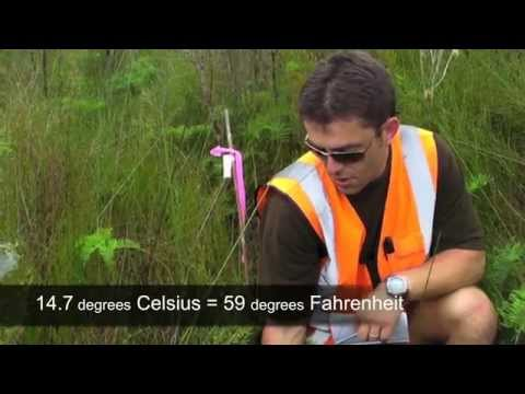 Nutrient Impacts on Wetlands: Field Studies New Zealand