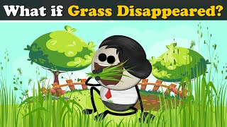 What if Grass Disappeared? | #aumsum #kids #science #education #children