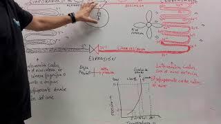 Explicación del circuito frigorífico