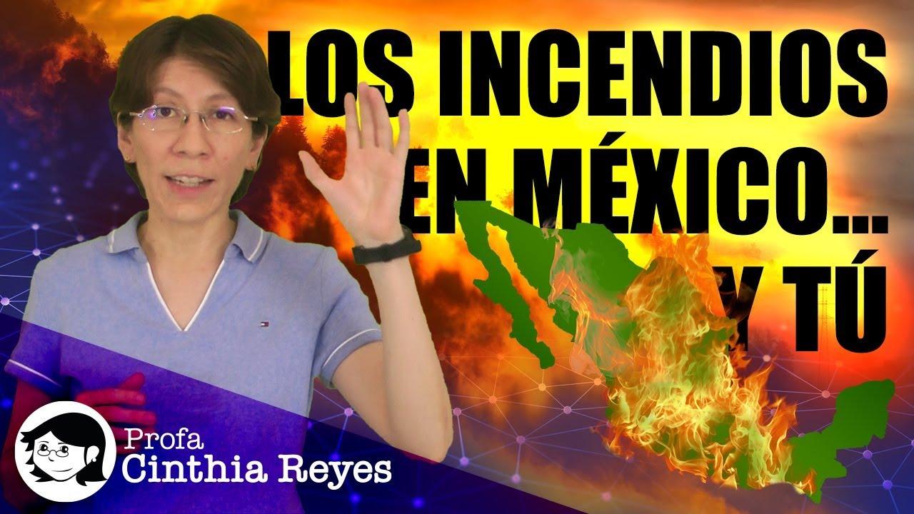 Los incendios en México... y tú