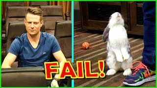 Rabbit&#39s Dance Audition Gone WRONG