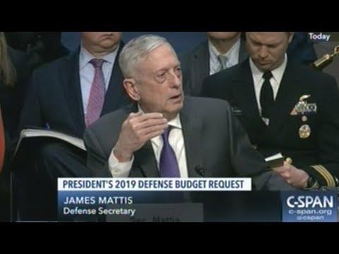 Defense Secretary Mattis At 2019 Pentagon Budget Request Hearing