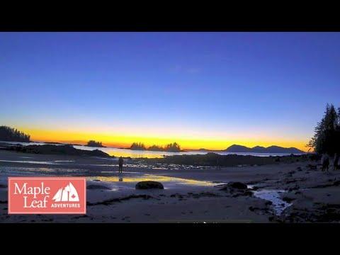 Wild Inside Passage BC and Alaska and Haida Gwaii