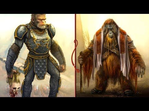 THE IMGA - An Elder Scrolls Secret You May Not Know! (TES Lore)