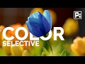 How to Replace Color in Photoshop CC 201