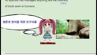 2018 수능완성 영어 15강 4번 - 번개콩 huma…