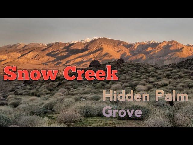 Snow Creek   Hidden Palm Grove   Solo Overnight Hike   1-20-2019