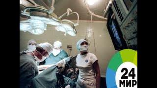 видео Трансплантология