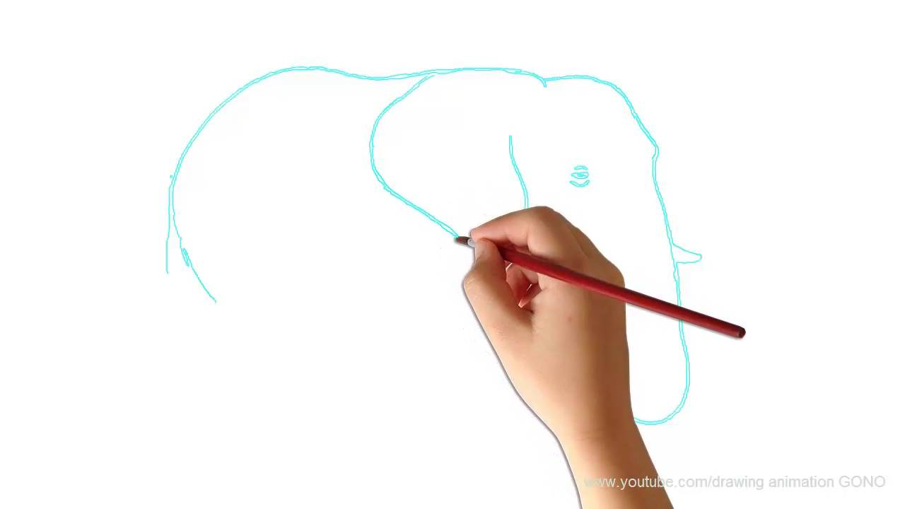 Teaching Kid To Drawhow To Draw An Elephantnursery Rhymes Song For  Kidtwinkle Twinkle Little Star