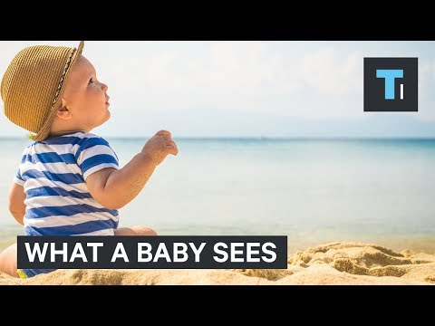 Thumbnail: What a baby sees during its first year