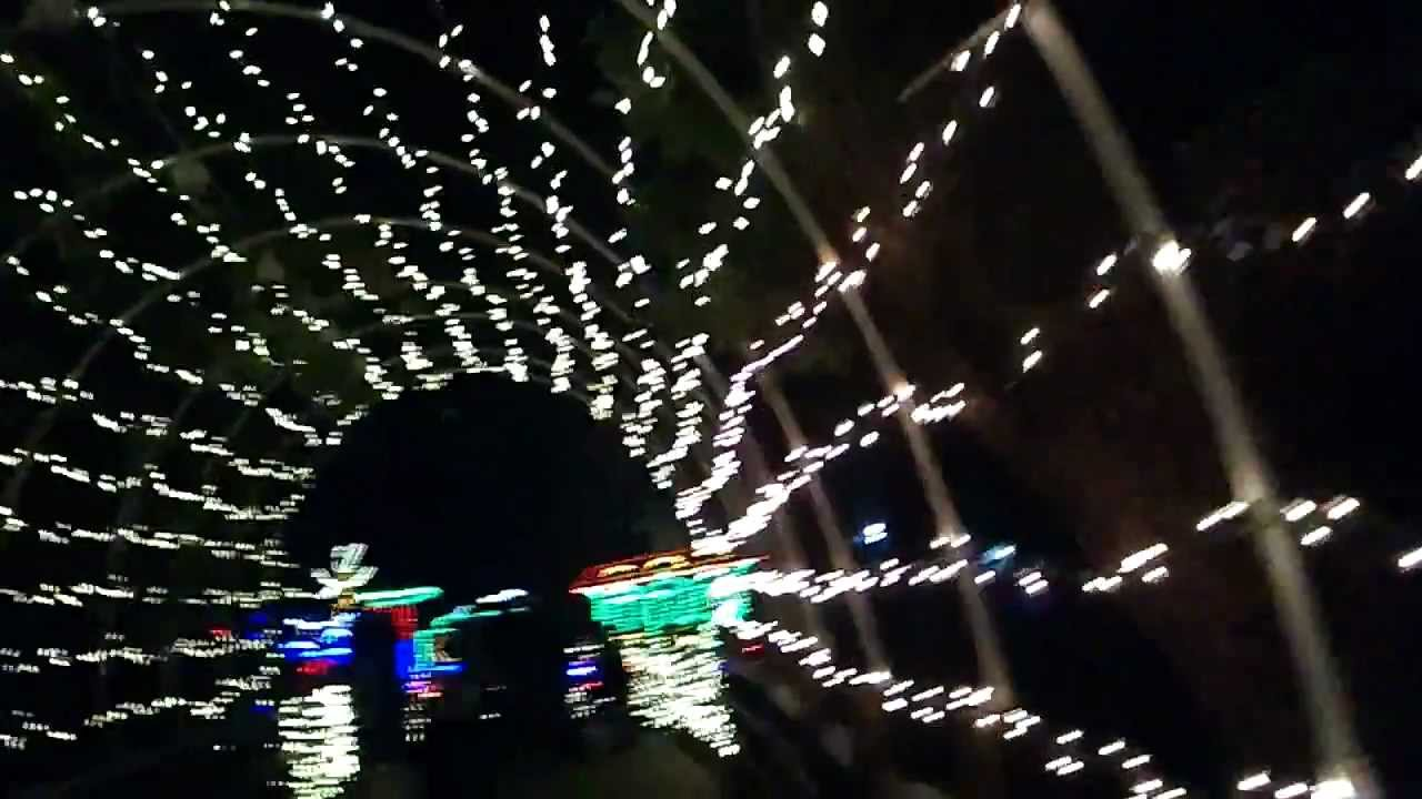 zoolights at fresno chaffee zoo 2011 in the style of gaspar no youtube