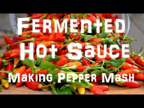 Homemade Tabasco Hot Sauce - Making Pepper Mash - Part 1 of 2