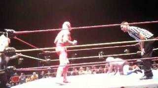 LACEY VON ERICH HAS A NICE ASS! PART ONE!  HULK HOGAN JIMMY HART RIC FLAIR THE BEAUTIFUL PEOPLE