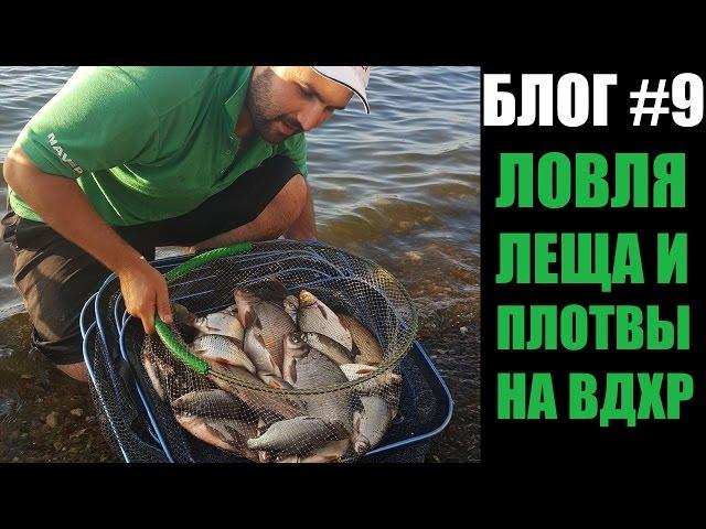 Ловля леща и плотвы на фидер на водохранилище. Рыбалка с Олегом Квициния : Vlog #9