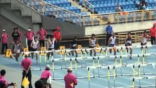 101年全國大專院校田徑公開賽男甲110公尺跨欄決賽