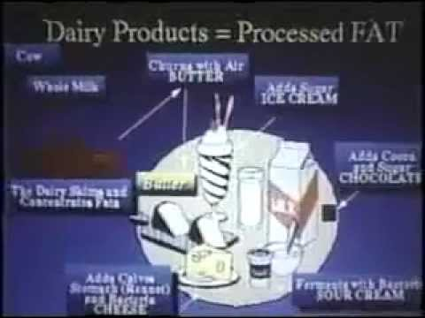 the-dangers-of-milk,-meat-and-eggs-and-the-connected-illnesses-!-(part-1-of-6)