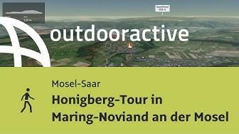 Wanderung in Mosel-Saar: Honigberg-Tour in Maring-Noviand an der Mosel
