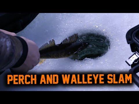Clayton Lake - Perch & WALLEYE SLAM