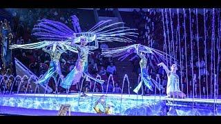 цирк на воде самое красивое выступление...