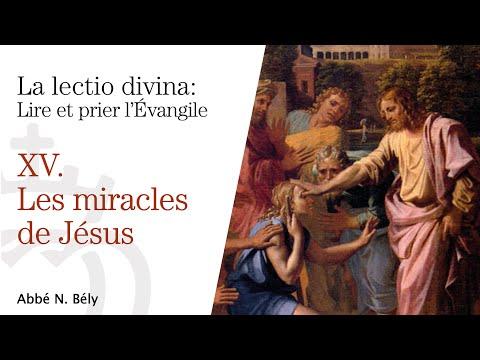Conférences sur la Lectio divina - XV. Les miracles de Jésus - par l'abbé Nicolas Bély