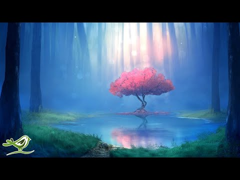 Deep Relaxing Music - Sleep Music, Meditation Music, Ambient Music