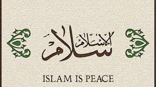 ACHTUNG DER WAHRE ISLAM - Kein Zwang im Glauben - Bekir Alboğa