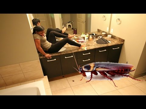 COCKROACH PRANK ON GIRLFRIEND