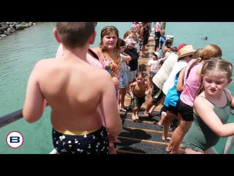 Ohope Wharf Jumpers