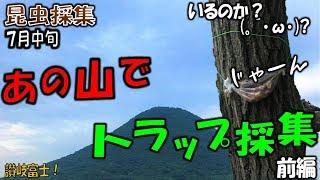 【カブトムシ+クワガタ+昆虫採集】トラップ採集!地元の有名な山にクワ...
